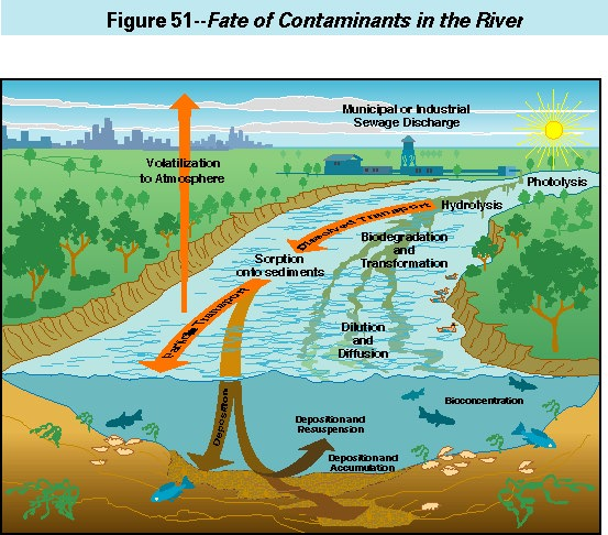 Contaminants In The Mississippi River 1987 92 Organic
