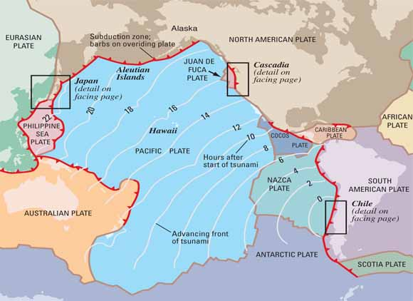 Surviving a tsunamilessons from chile hawaii and japan map of pacific basin showing tectonic plates gumiabroncs Images