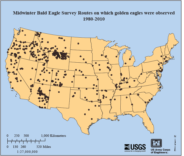 USGS Data Series 753 Golden Eagle Records from the Midwinter Bald