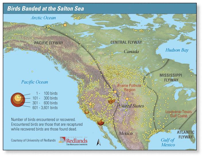The USGS Salton Sea Science Office