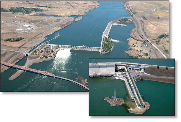 White sturgeon passage at the dalles dam for Dam fish count