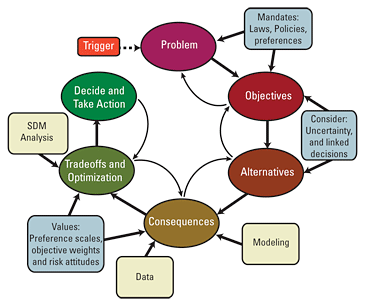 policy process model steps