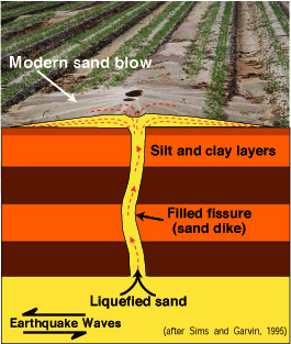 Modern sand blow showing silt and clay layers, sand dike, liquified sand and earthquake waves