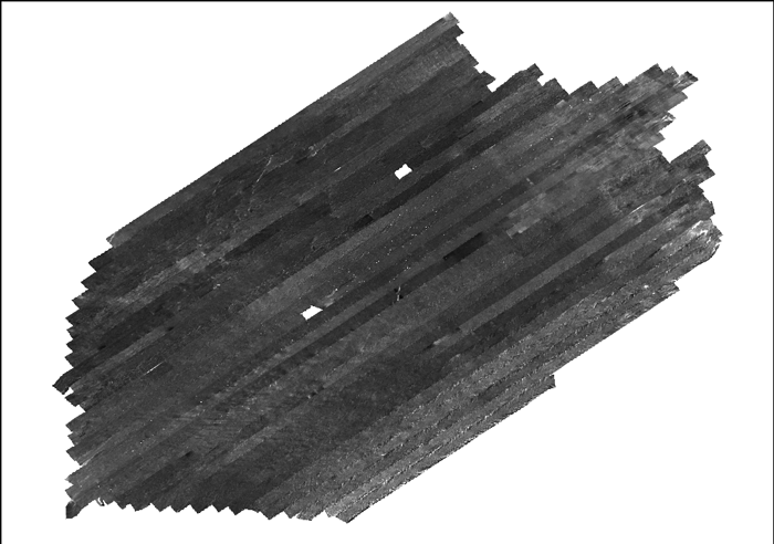 grey scale image of sidescan-sonar mosaic