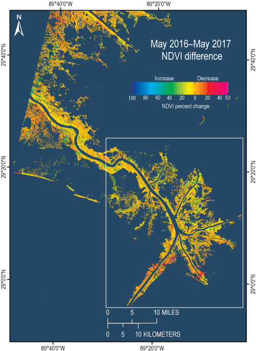USGS OpenFile Report Mapping The Change Of Phragmites - Mississippi river delta map