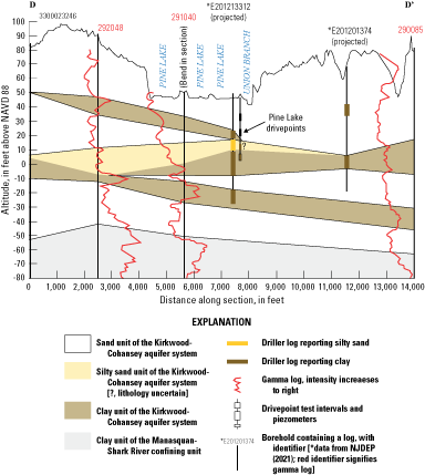 Pine Lake on a regional line of section with geophysical logs and lithology correlations.
